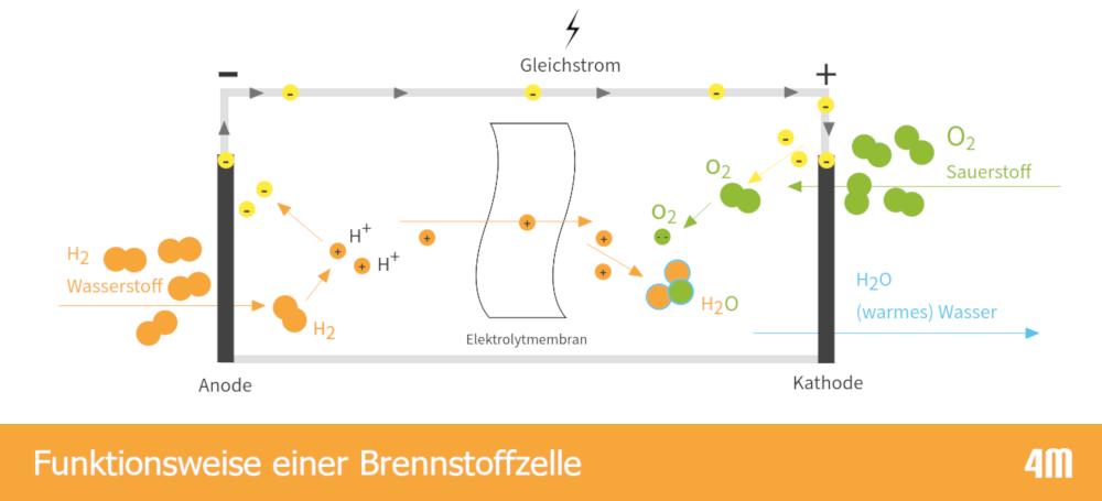 Schema zur Funktionsweise einer Brennstoffzelle