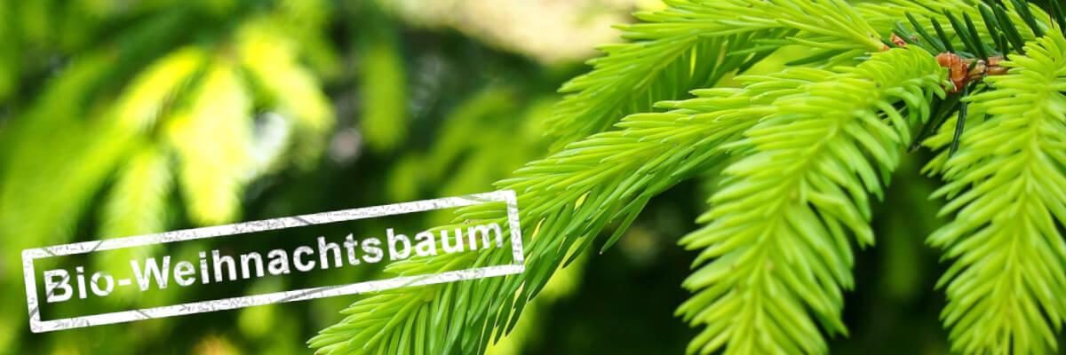 Weihnachtsbaum mit Bio-Stempel